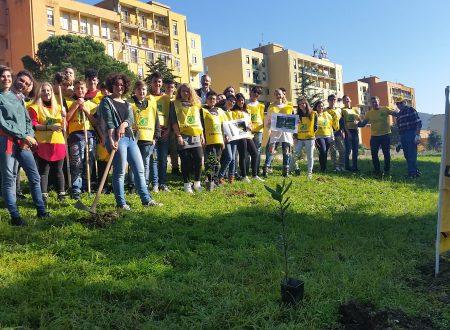Resoconto Festa dell'Albero 2016