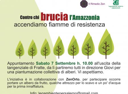 """""""Contro chi brucia l'Amazzonia"""": piantumazione collettiva a Salerno"""